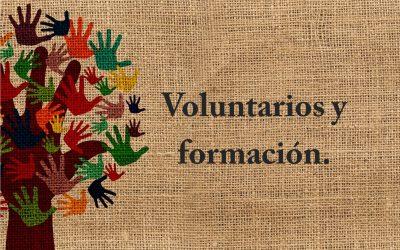 El Voluntario: ¿Por qué es necesaria su formación?
